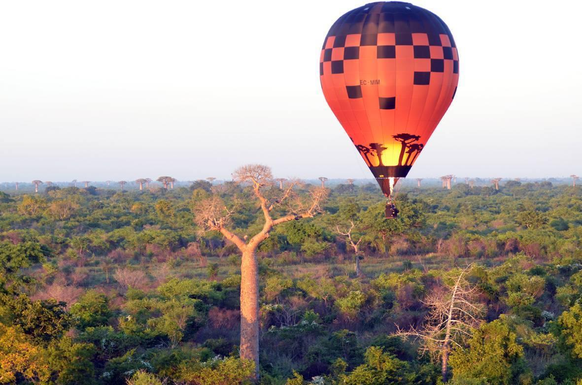 Desde la Avda. de los Baobabs los vuelos en globo han sido mágicos.