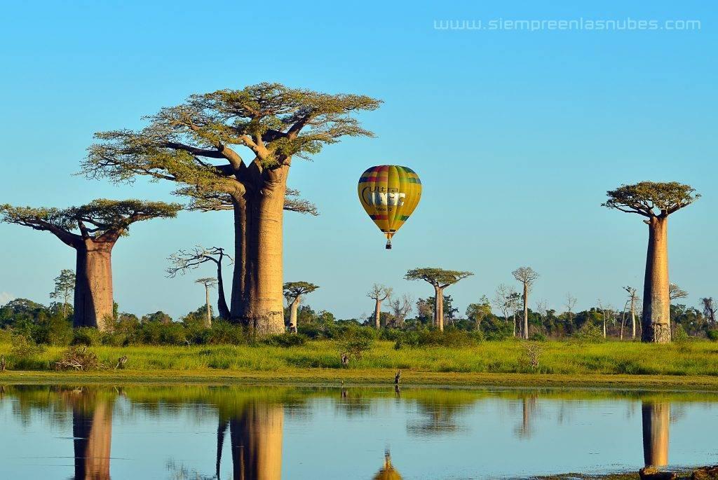 Madagascar Ultramagic Experience Avenida de los Baobabs, Morondava, Madagascar