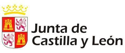La Junta de Castilla y León apoya el Festival Accesible de Globos de Segovia