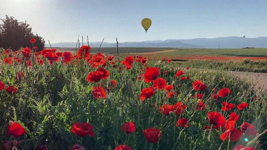 Volar en globo Segovia 29-05-2021